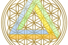 Dreieck mit blume transparent
